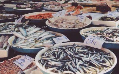 I pescatori dicono che il COVID-19 non viene trasmesso dai pesci