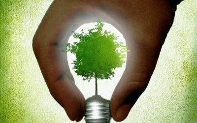 Come il mondo dei supermercati usa la sostenibilità